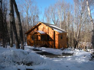 Beech Mountain Vacation Rental