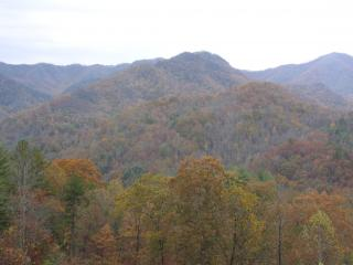 located in the scenic Great Smoky Mountains